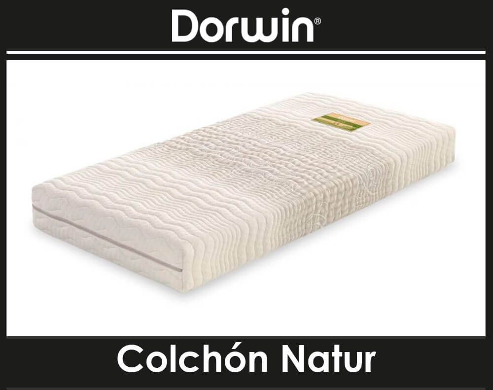 Natur Latex Articulado Dorwin
