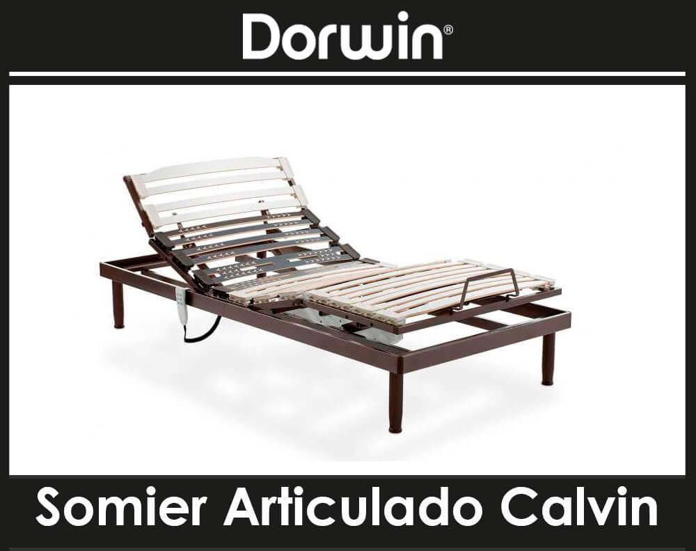 Somier Articulado Calvin de Dorwin